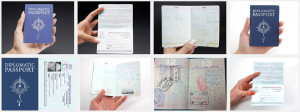 Custom Novelty Passport Books